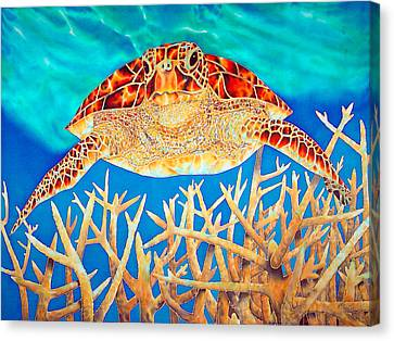 Sea  Turtle Soaring Over Staghorn Canvas Print