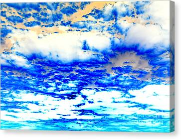 Canvas Print featuring the photograph Soaring Sea by Christine Ricker Brandt