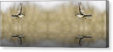 Titmouse Canvas Print - Soaring Souls Fountain Of Youth by LeeAnn McLaneGoetz McLaneGoetzStudioLLCcom