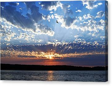 Canvas Print featuring the photograph Soaring Sunset by Anthony Baatz