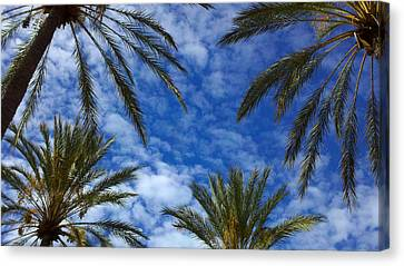 Canvas Print featuring the photograph So Cal Sky by Richard Stephen