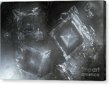 Sodium Hydroxide Crystals Canvas Print by Charles D Winters