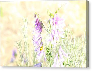 Soft Desert Flower Canvas Print