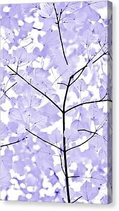 Soft Lavender Leaves Melody Canvas Print by Jennie Marie Schell