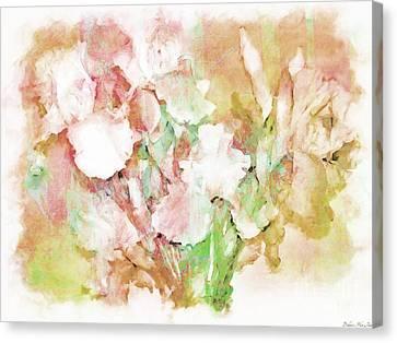 Soft Pink Iris Photo Art Canvas Print by Debbie Portwood