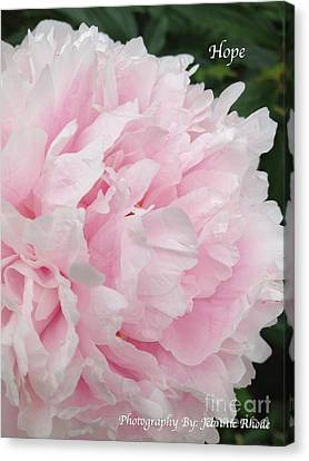 Canvas Print featuring the digital art Soft Pink Peony by Jeannie Rhode