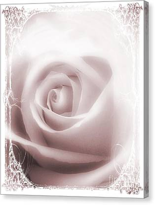 Soft Rose Canvas Print by Michelle Frizzell-Thompson