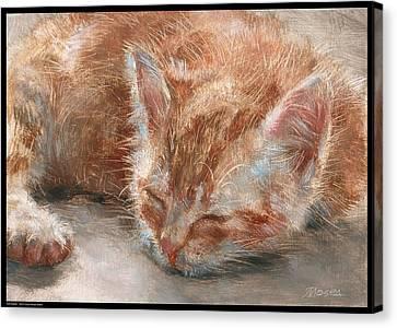 Soft Sleeper Canvas Print