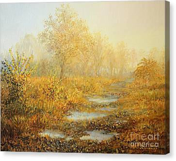 Soft Warmth Canvas Print by Kiril Stanchev