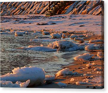 Soft Winter Morning Canvas Print by Dianne Cowen