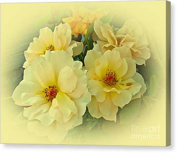 Softly And Sweetly Canvas Print by Mother Nature
