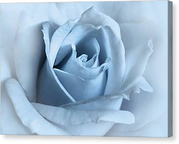 Softness Of A Blue Rose Flower Canvas Print by Jennie Marie Schell