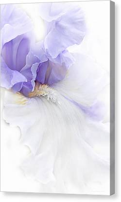Canvas Print featuring the photograph Softness Of A Lavender Iris Flower by Jennie Marie Schell