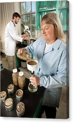 Soil Pesticides Research Canvas Print by Peggy Greb/us Department Of Agriculture