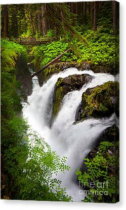Sol Duc Falls Canvas Print by Inge Johnsson