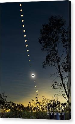Solar Eclipse Composite, Queensland Canvas Print by Philip Hart