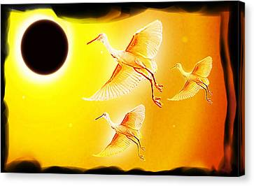 Solar  Eclipse Canvas Print by Hartmut Jager