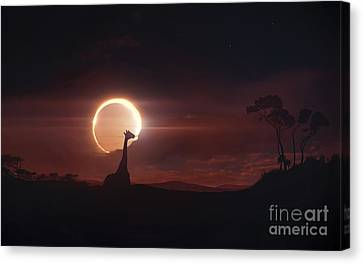 Solar Eclipse Over Africa Canvas Print by Tobias Roetsch