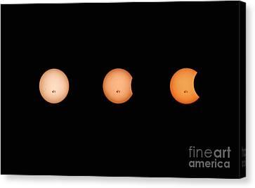 Solar Eclipse Progression Canvas Print by Charline Xia