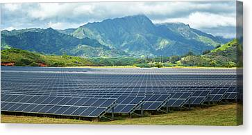 Solar Energy Panels On Field, Poipu Canvas Print by Panoramic Images