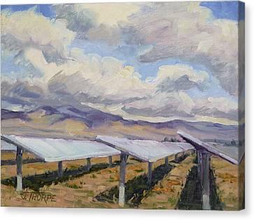 Solar Farm Poppies Canvas Print by Jane Thorpe