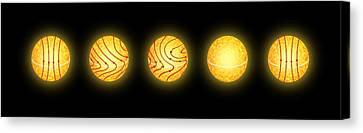 Solar Magnetic Field Reversal Canvas Print by Mikkel Juul Jensen