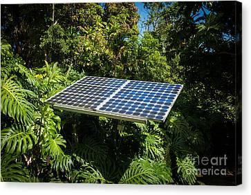 Solar Panel In Jungle Canvas Print
