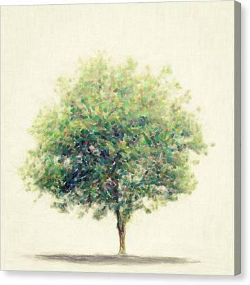 Seurat Canvas Print - Soledad by Taylan Apukovska