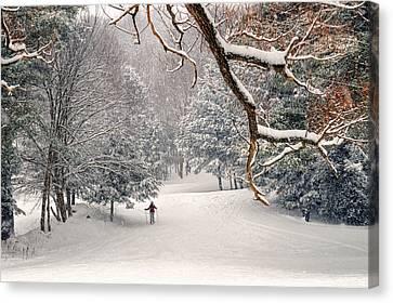 Solitary Skier At Otis Ridge Canvas Print