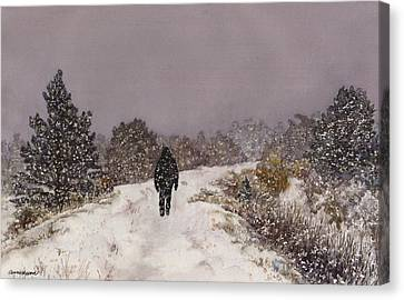 Solitude Canvas Print by Anne Gifford