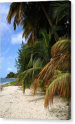 Canvas Print featuring the photograph Nude Beach by The Art of Alice Terrill