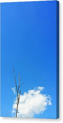 Simple Landscape Canvas Print - Solitude - Blue Sky Art By Sharon Cummings by Sharon Cummings
