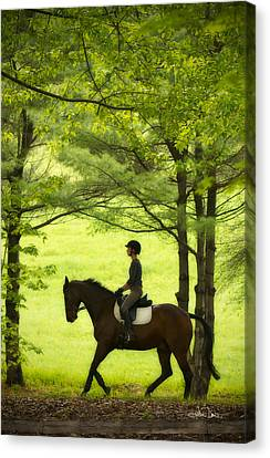 Canvas Print featuring the photograph Solitude by Joan Davis