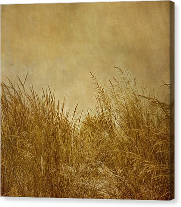 Hdr Landscape Canvas Print - Solitude by Kim Hojnacki