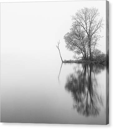Keuka Canvas Print - Solitude by Michele Steffey
