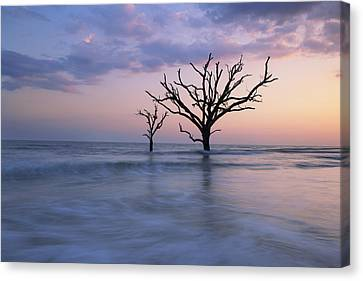 Solitude Canvas Print by Mike Lang