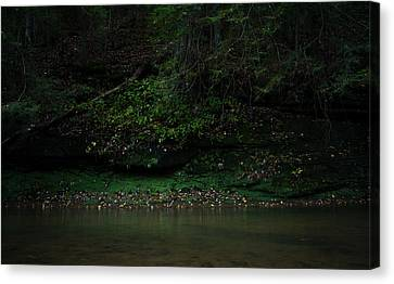 Solitude Canvas Print by Shane Holsclaw