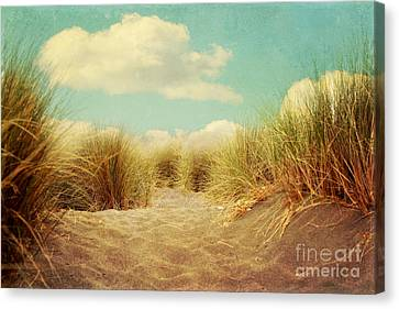 Solitude Canvas Print by Sylvia Cook