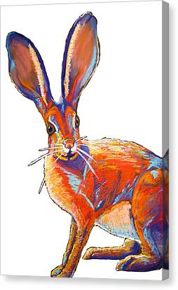 Some Bunnie Canvas Print by Holly Wright