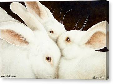 Some Set Of Buns... Canvas Print by Will Bullas