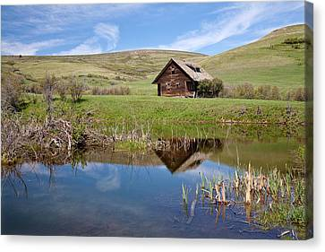 Canvas Print featuring the photograph Somebody's Dream by Jack Bell
