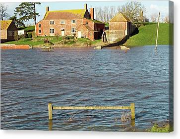Somerset Levels Floods Canvas Print by David Woodfall Images