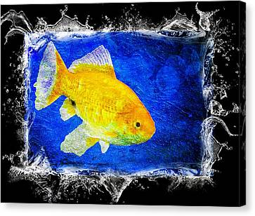 Canvas Print featuring the photograph Something Fishy by Aaron Berg