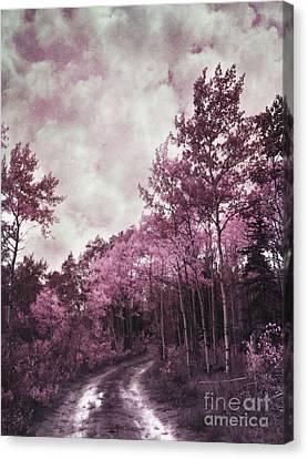 Sometimes My World Turns Pink Canvas Print