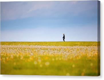 Sometimes We All Walk Alone Canvas Print by Karol Livote