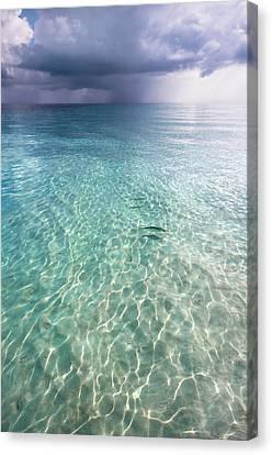 Somewhere Is Rainy. Maldives Canvas Print
