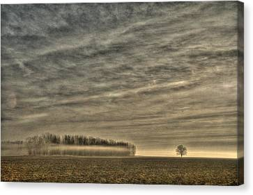 Somewhere There On That Desolate Plain  Canvas Print by William Fields