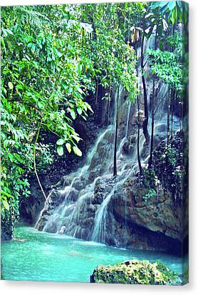 Sommerset Falls Jamaica Canvas Print by Carey Chen