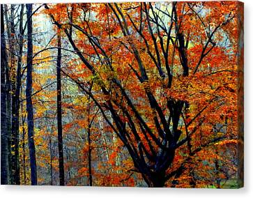 Song Of Autumn Canvas Print
