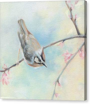 Songbird Canvas Print by Natasha Denger